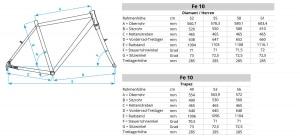 Geometriedaten Fe-10