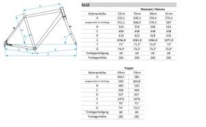 Geometriedaten Fe-12
